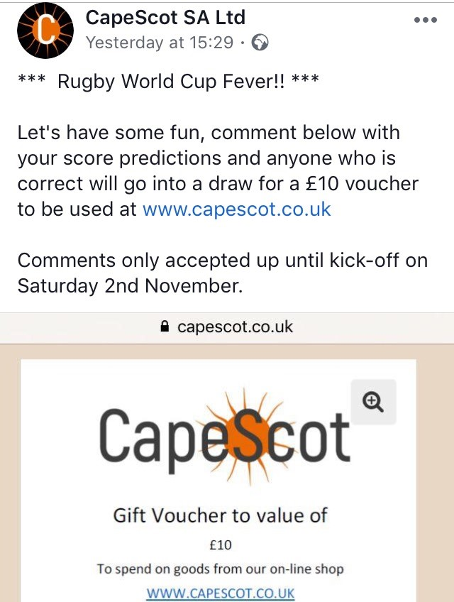 Rugby World Cup Fever